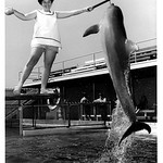 Barbara at 18 years with a dolphin.